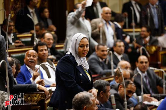 الجلسة العاملة لمجلس النواب (15)