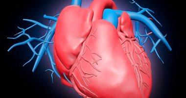 دراسة تتوصل إلى عقار يعالج السرطان ويعزز تجديد أنسجة القلب