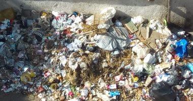 انتشار القمامة في حدائق أكتوبر وطلبات تخصيص الأموال