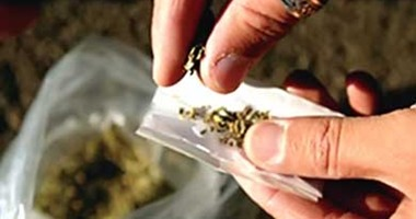 """دراسة صادمة: متعاطو """"الماريجوانا"""" أكثر نجاحا ورضا عن حياتهم من أقرانهم"""