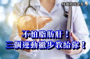 不怕脂肪肝!三個運動撇步教給你!-台灣養生網
