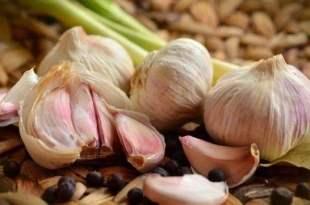 大蒜可以增加免疫力?怎麼吃最好?-台灣養生網