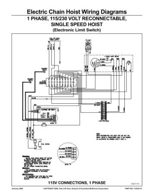 Electric Chain Hoist Wiring Diagrams  Products On American Crane