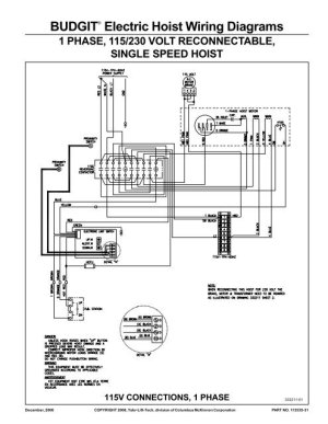 BUDGIT® Electric Hoist Wiring Diagrams  Hoists Direct