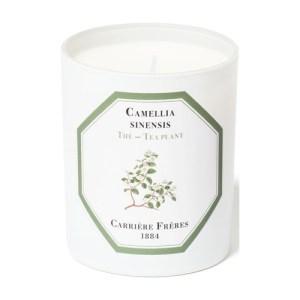 Scented Candle Tea Plant - Camellia Sinensis 185 g