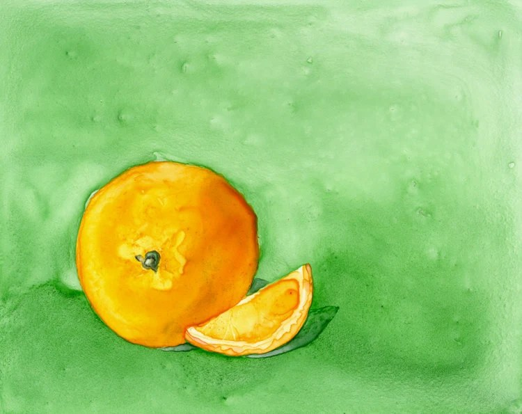 Orange Fruit Still Life Art Painting - 8x10 Giclee Print - BrazenDesignStudio