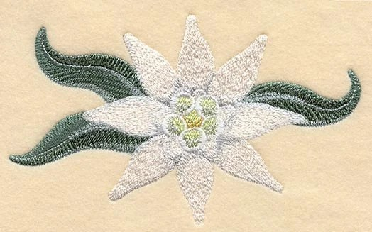 German Edelweiss Flower Embroidered Flour Sack Hand Towel