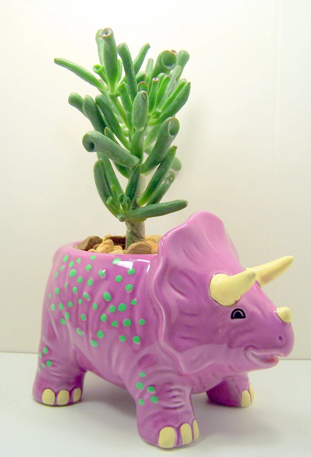 Succulent planter  DIY kit Dinosaur Purple or Green