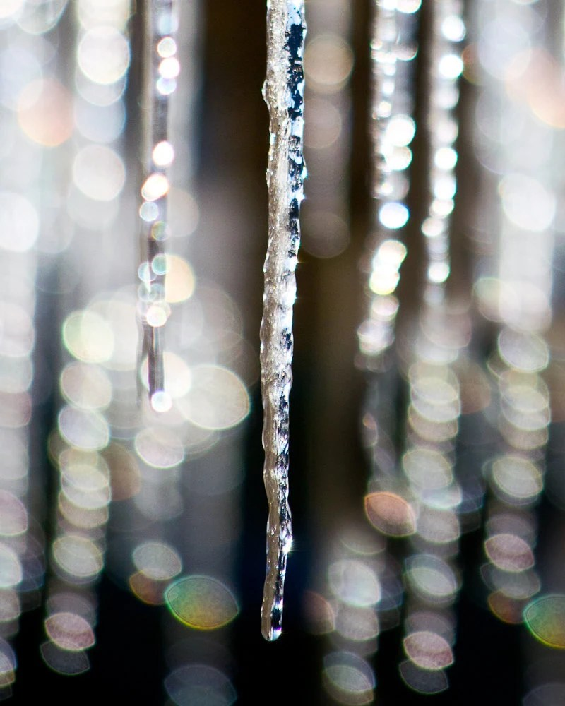 Winter, Snow, Icicle,  Wall Art, 8 x 10 Photography, - TerraVision