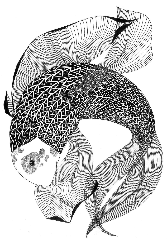 Fish drawing - laurakmurdoch
