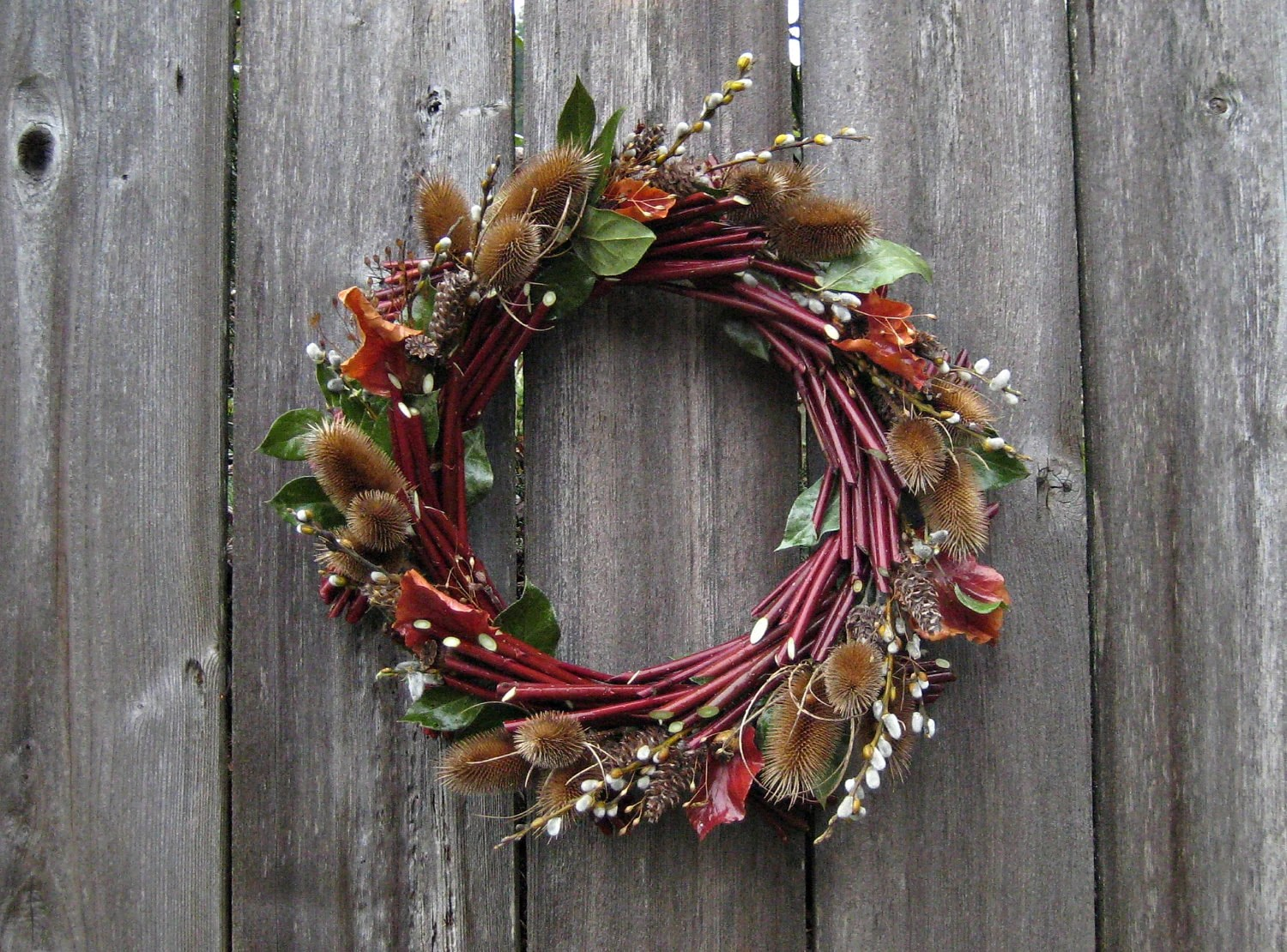 Natural Spring Twig Wreath Spring Teasel With Red Osier