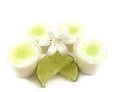 4 Lime Cooler Soy Candle Tart Melts Air Freshner Tart Cups - SerendipityCandle
