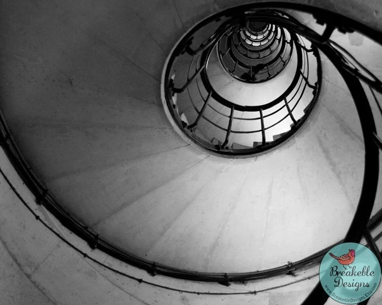 Spiral Black and White Staircase Sea Shell Abstract 8x10 Photograph - BreakebleDesigns