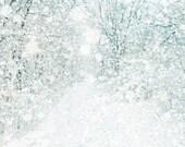 Winter white wedding, winter decor, neutrals, tree photography, snow storm, forest, woodland, snowflake - Nowhere 5x7 - bomobob