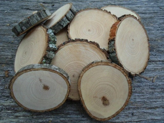 "100 hickory wood slices 2"" for crafts, candles, decoration, blanks, rustic weddings"