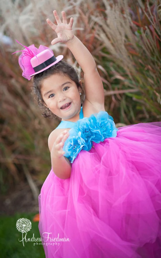 Turquoise and Fuchsia fairy-karikouture