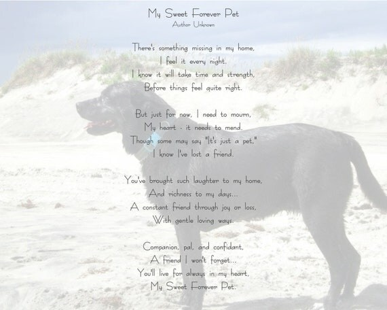 Items Similar To Personalized Pet Loss Digital Poem Print
