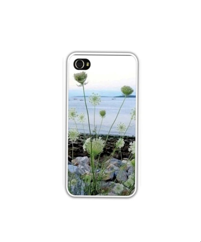 iPhone 4/4S, 5 Case, Queen Anne's Lace,Casco Bay, Portland, Featured On Etsy's Front Page, Maine Coast Scenic Cases... At Your Fingertips - LovesParisStudio