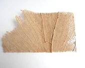 Beach Decor - Natural Sea Fan - Authentic Specimen Quality - CereusArt