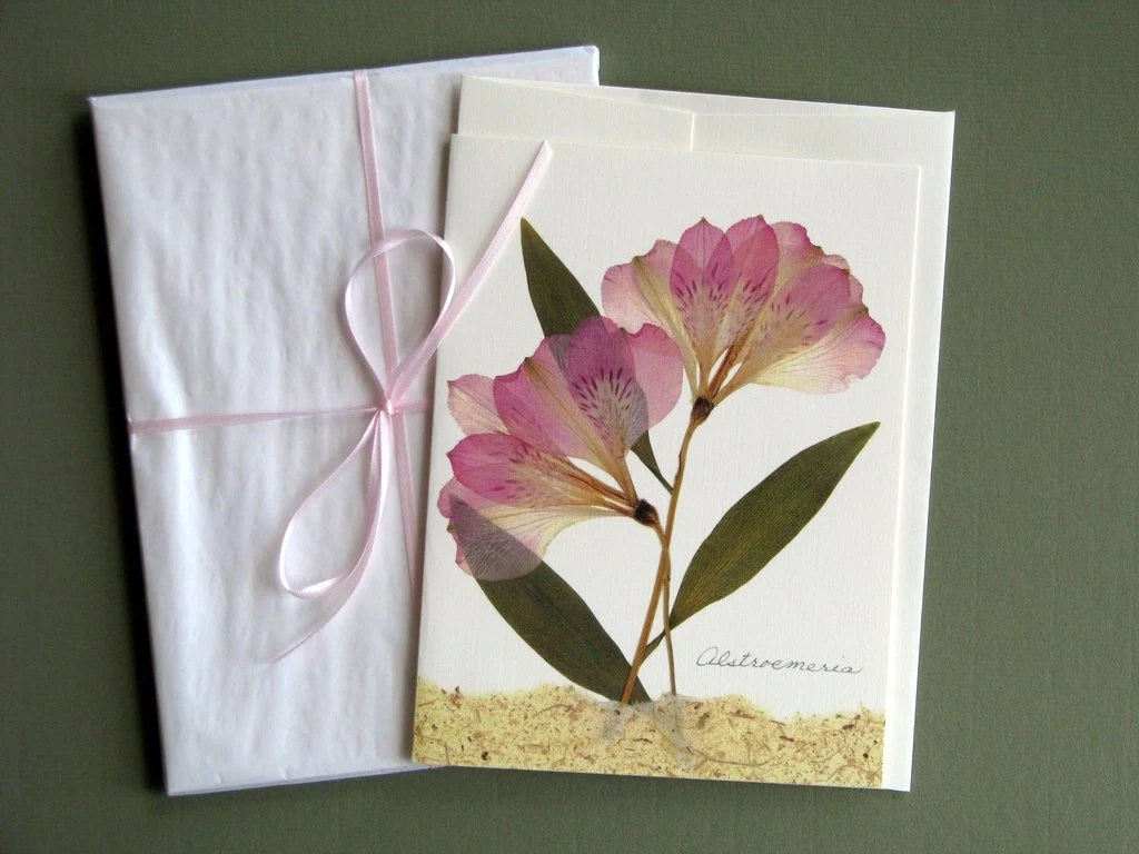 Alstroemeria Flowers Pressed Flower Card Soft By