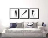 Feather Photo Set, black and white photo, abstract photography, black and white art print photo set home decor wall decor - semisweetstudios