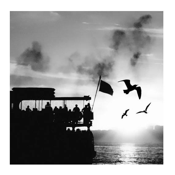 Black and White PHOTOGRAPHY bw istanbul Photography Silhouette Photography  Urban Photography City Photography 8''x'8'' - gonulk