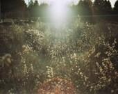 Atmosphere - FrancescaCrippa