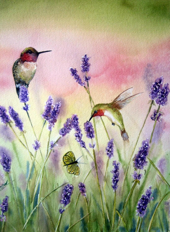 Hummingbirds and lavender, original watercolor, bird art, garden painting - TivoliGardens