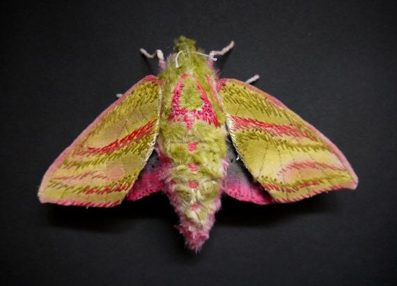 Fabric sculpture -Elephant hawk moth textile art