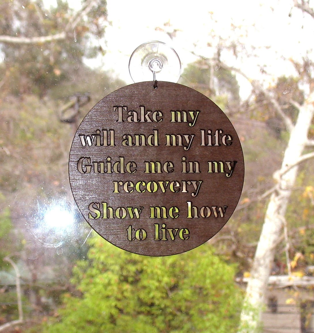 Na Narcotic Anonymous 3rd Step Prayer Window Hanger