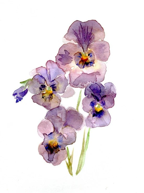 Original Violet Pansy Watercolor Painting. Flower Art. Purple blue Pansy Painting by Michelle Dujardin - Zendrawing