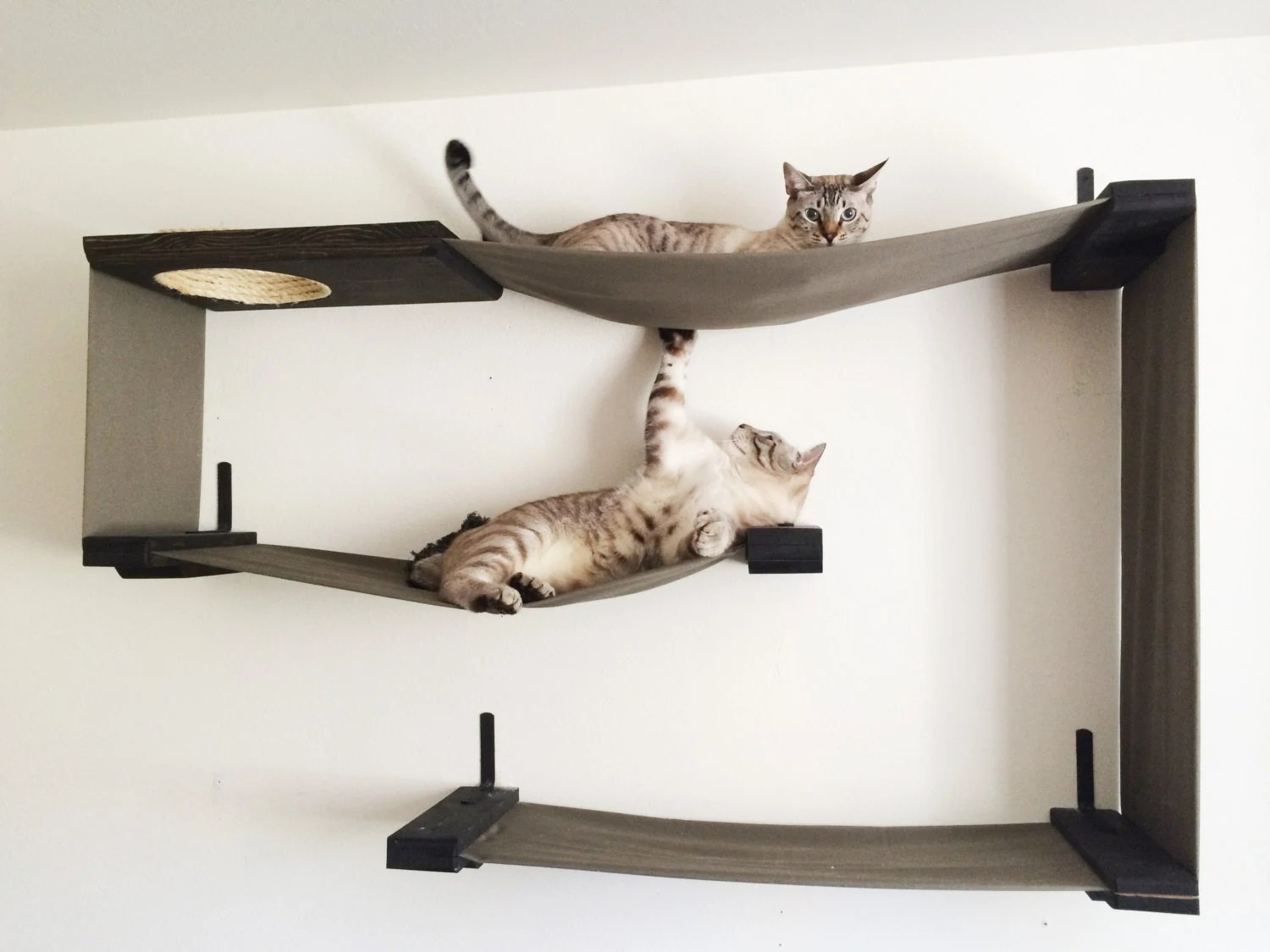 Fabric Cat Maze Cat Hammock Shelves By Catastrophicreations