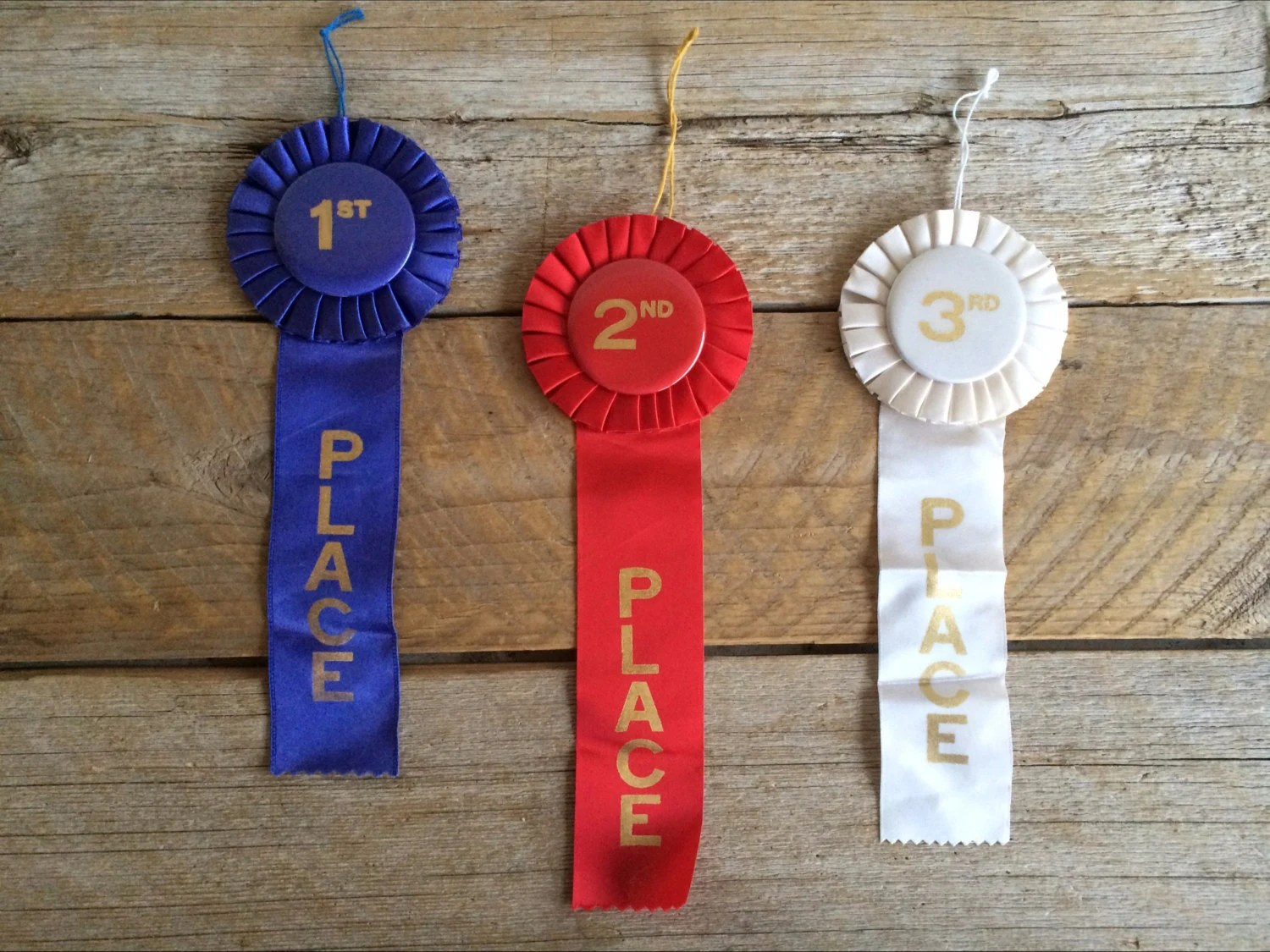 Vintage Ribbon Set First Place Second Place By