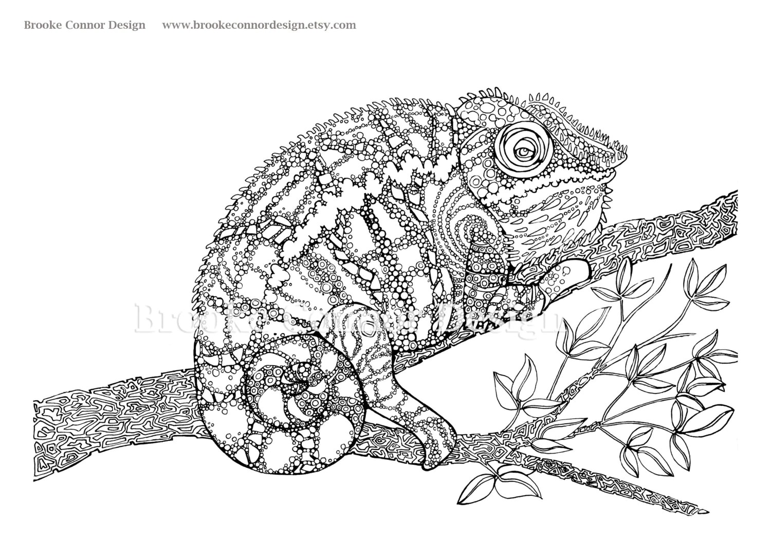 the chameleon coloring page super detailed by brookeconnordesign