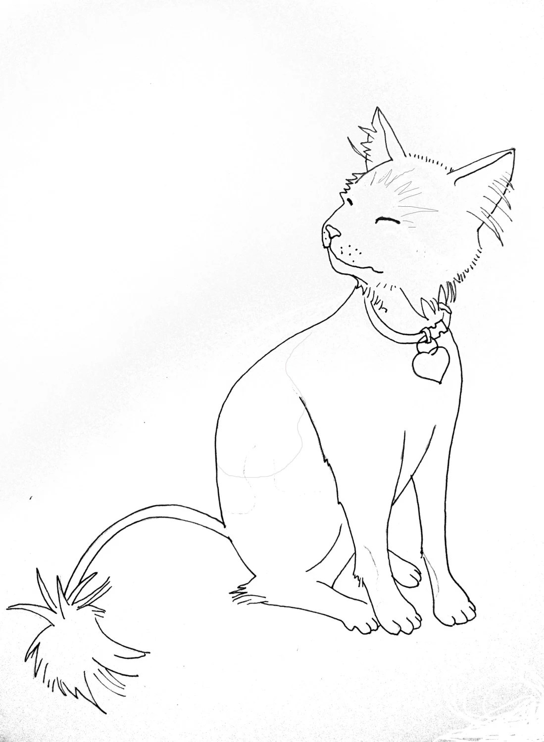 Custom Cat Drawing Line Art Cat Outline Pet By Petspaperandink