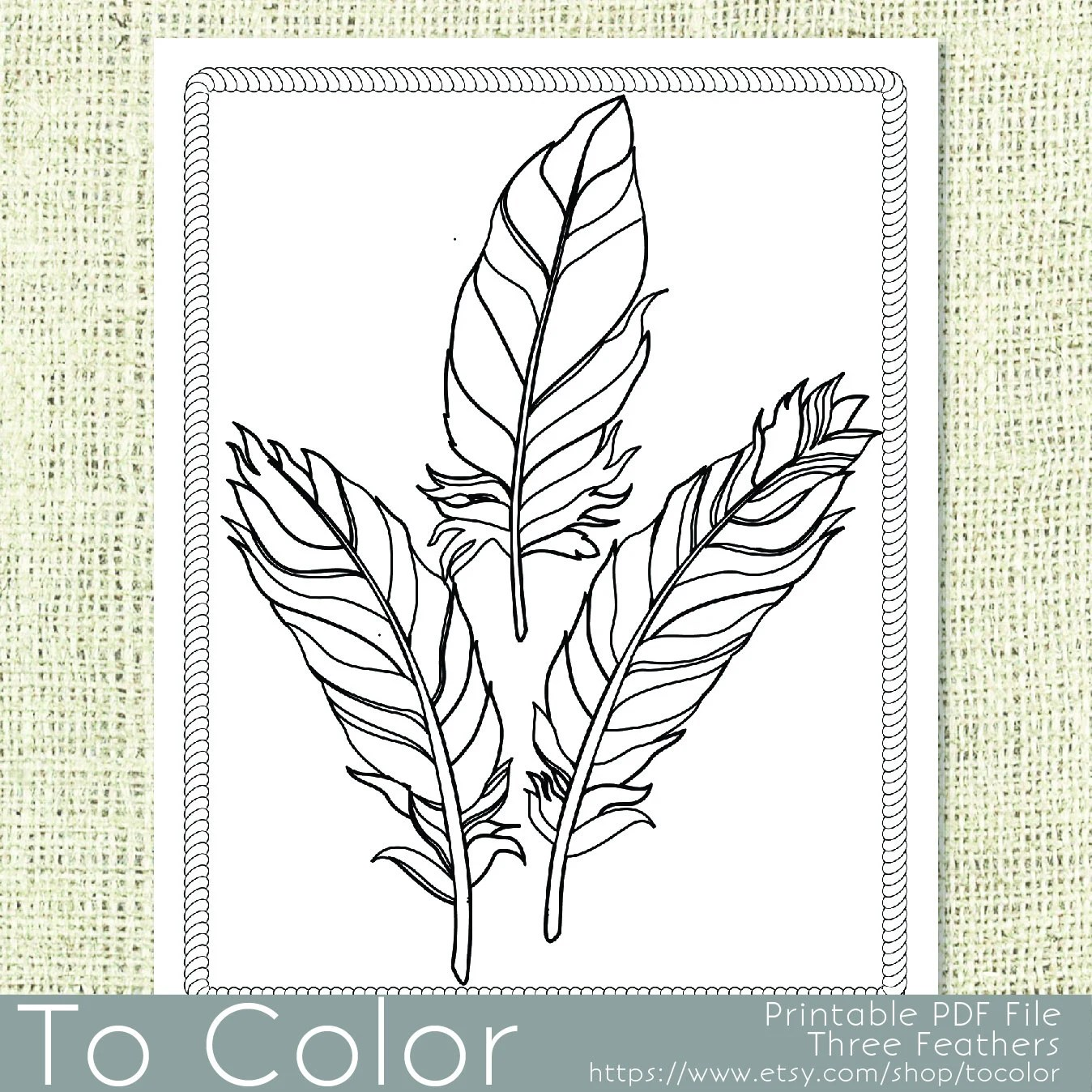 Printable Feathers Coloring Page For Adults By