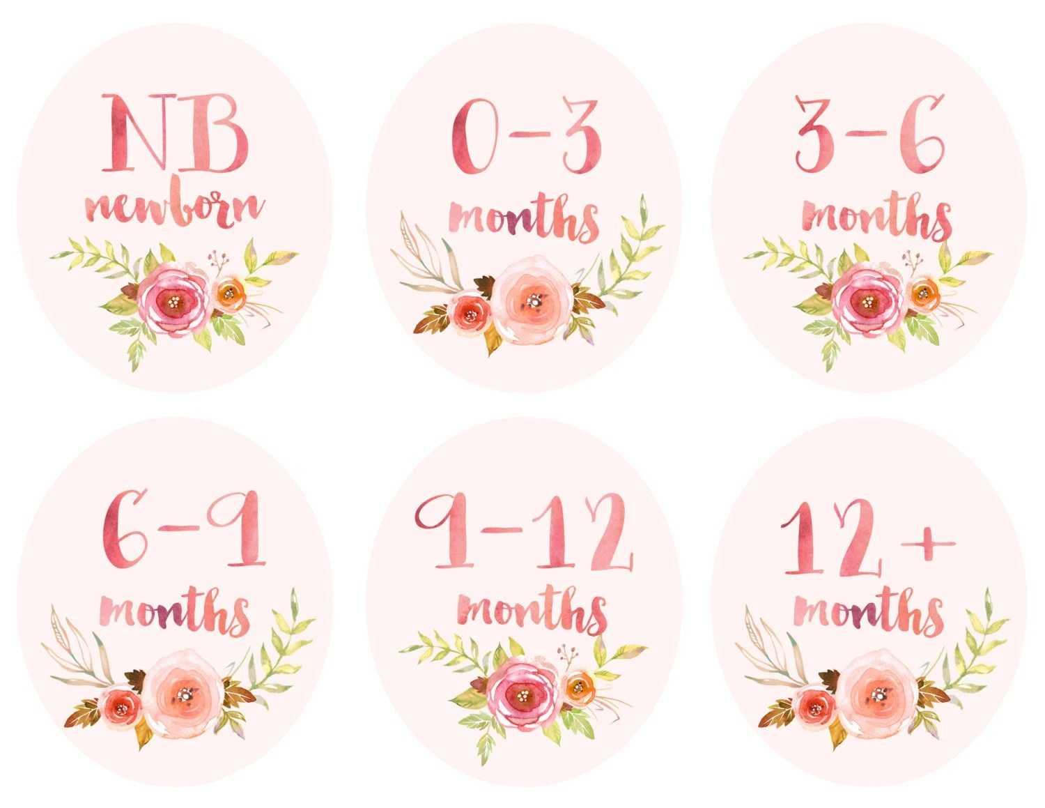 Baby Girl Infant Clothing Printable Tags Labels Dividers For
