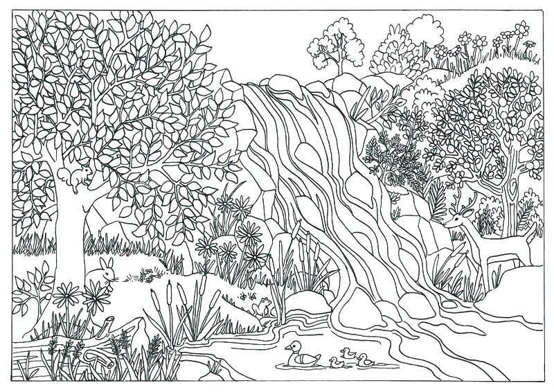 waterfall nature scene coloring page coloring for adults on etsy