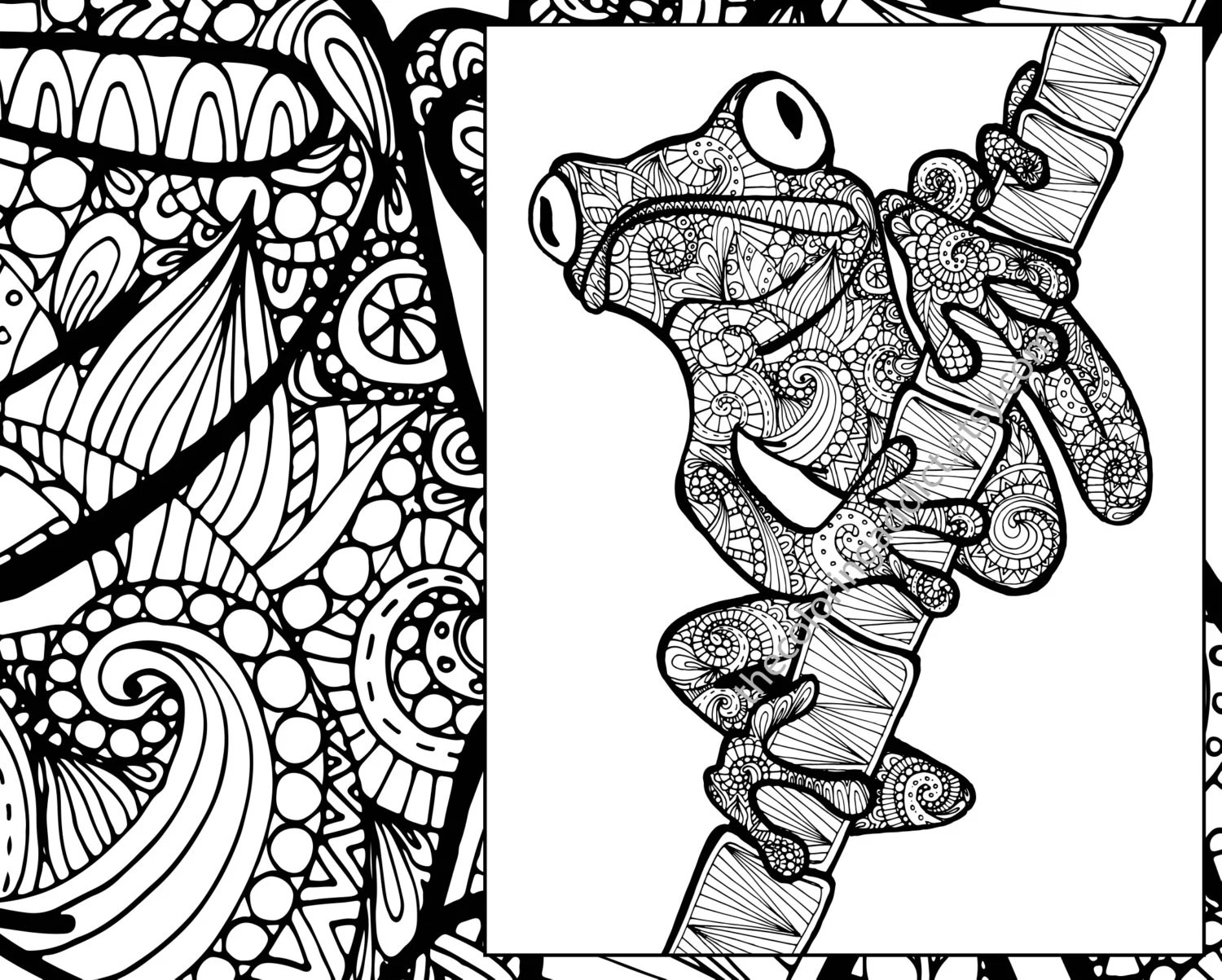 Frog Coloring Sheet Animal Coloring Zentangle Adult