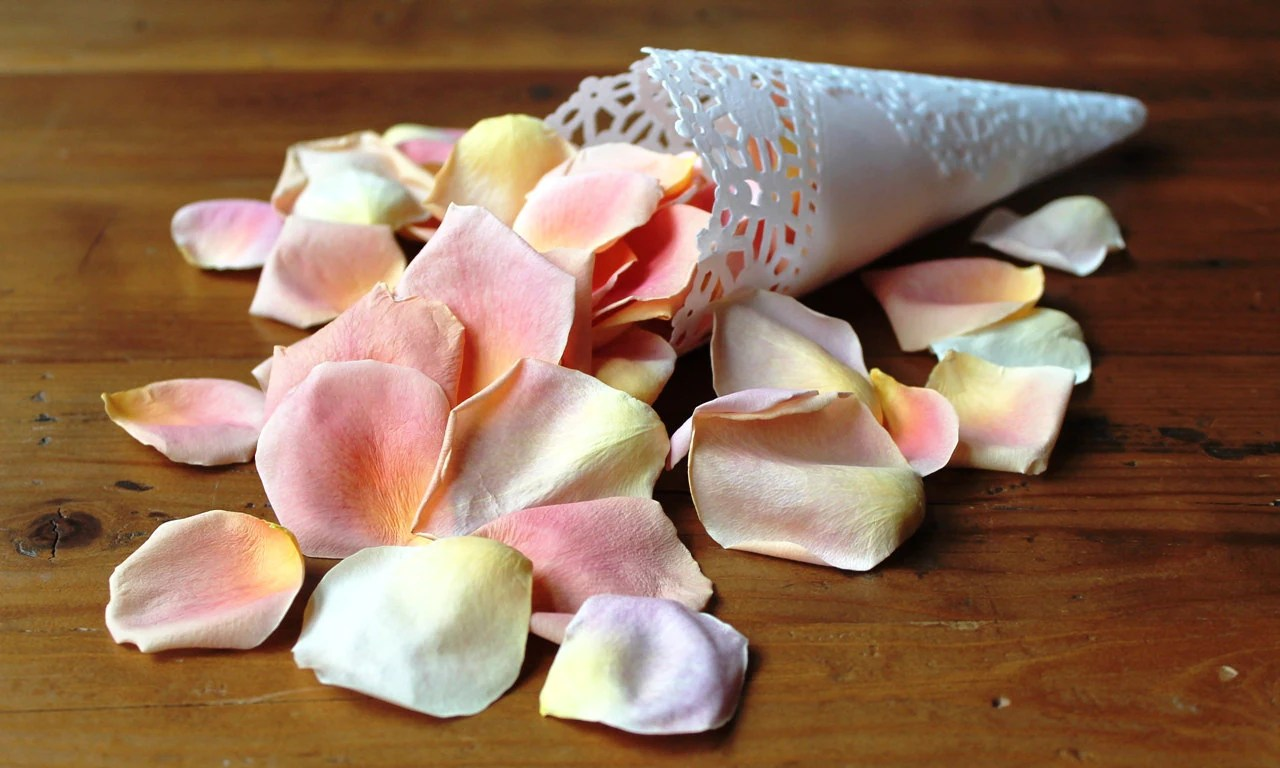 Freeze Dried Roses Heads