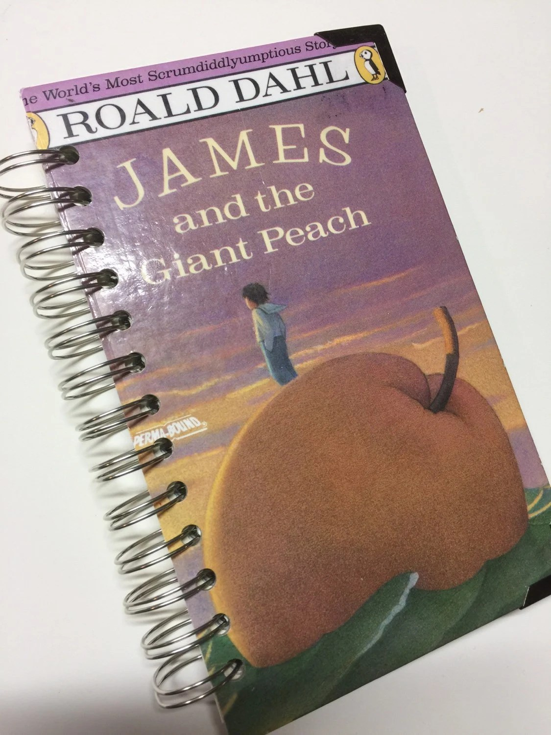 James And The Giant Peach Repurposed Book Cover