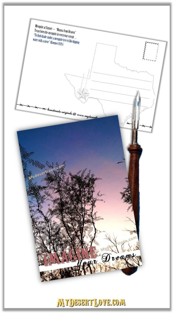 Desert Sunset Postcard, H...