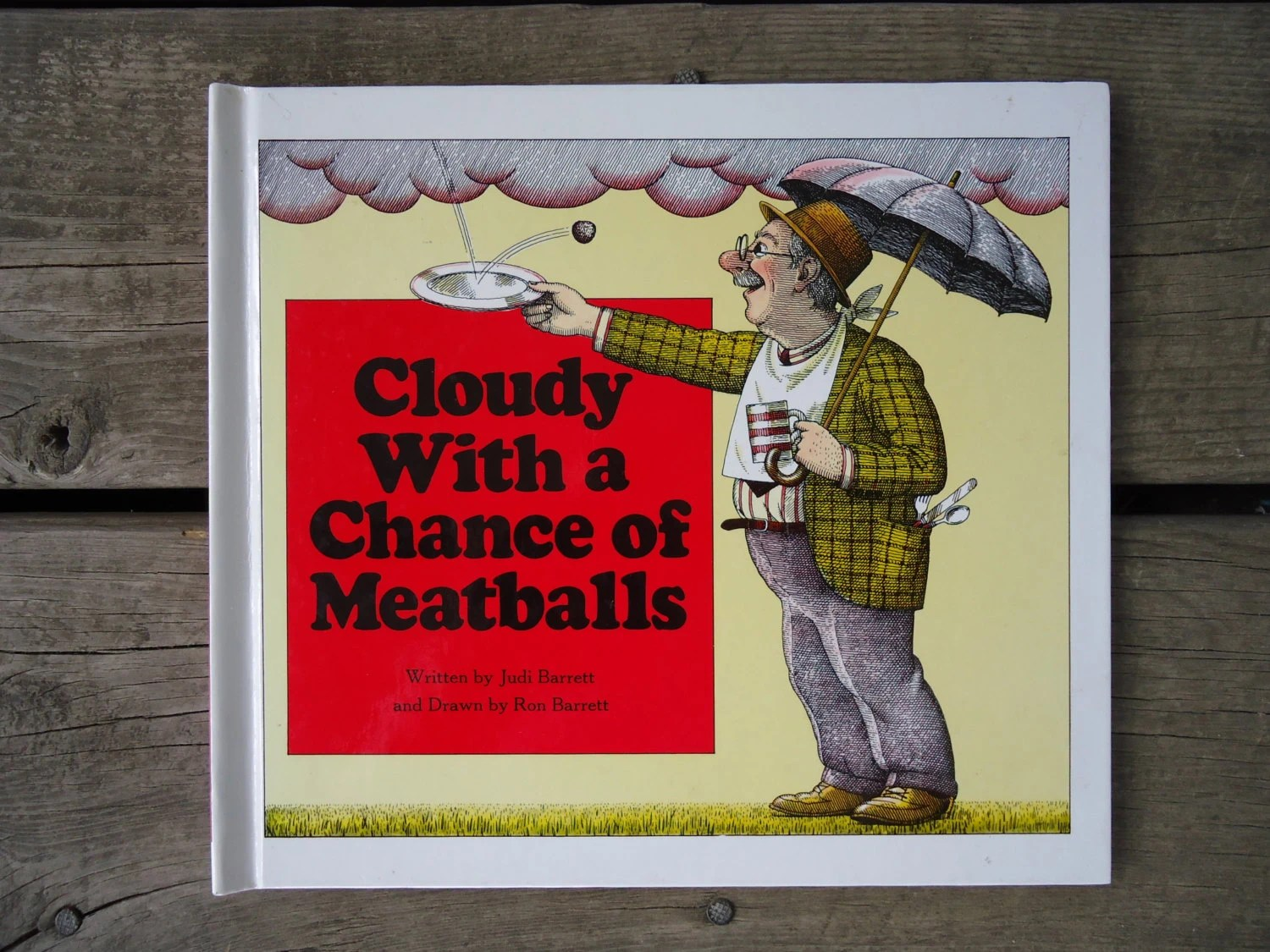 Cloudy With A Chance Of Meatballs Hardback Book