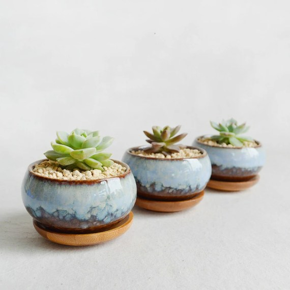 Desk Accessories: Glazed Porcelain Succulent Planter