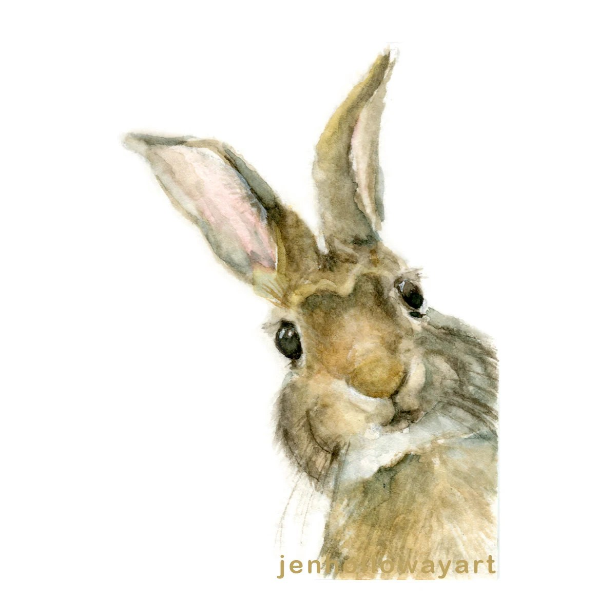 Watercolor Rabbit Rabbit Print Pooka Print Jackrabbit