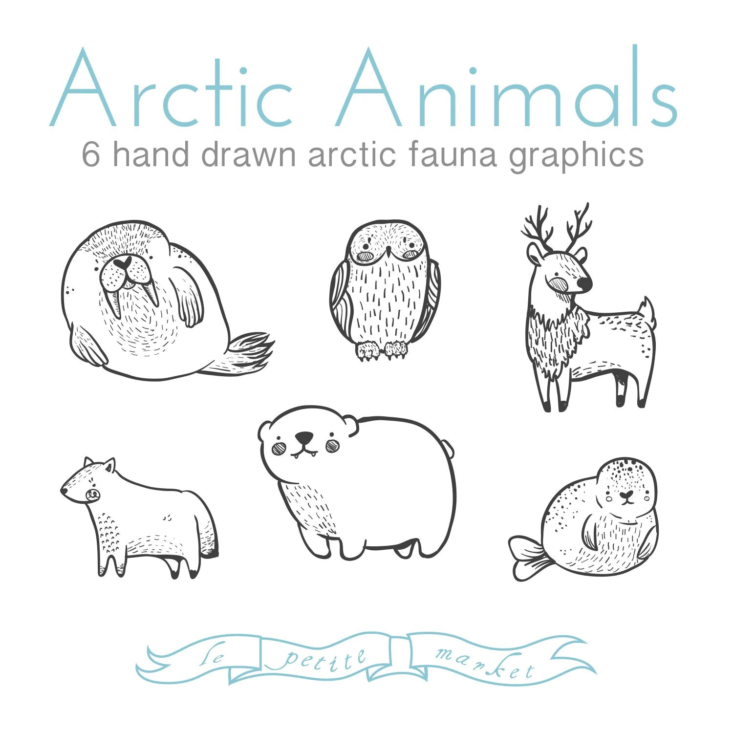 Cute Doodly Hand Drawn Arctic Animal Clipart Illustrations