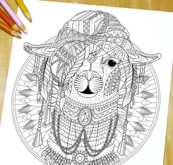 items similar to lovely alpaca  adult coloring page print