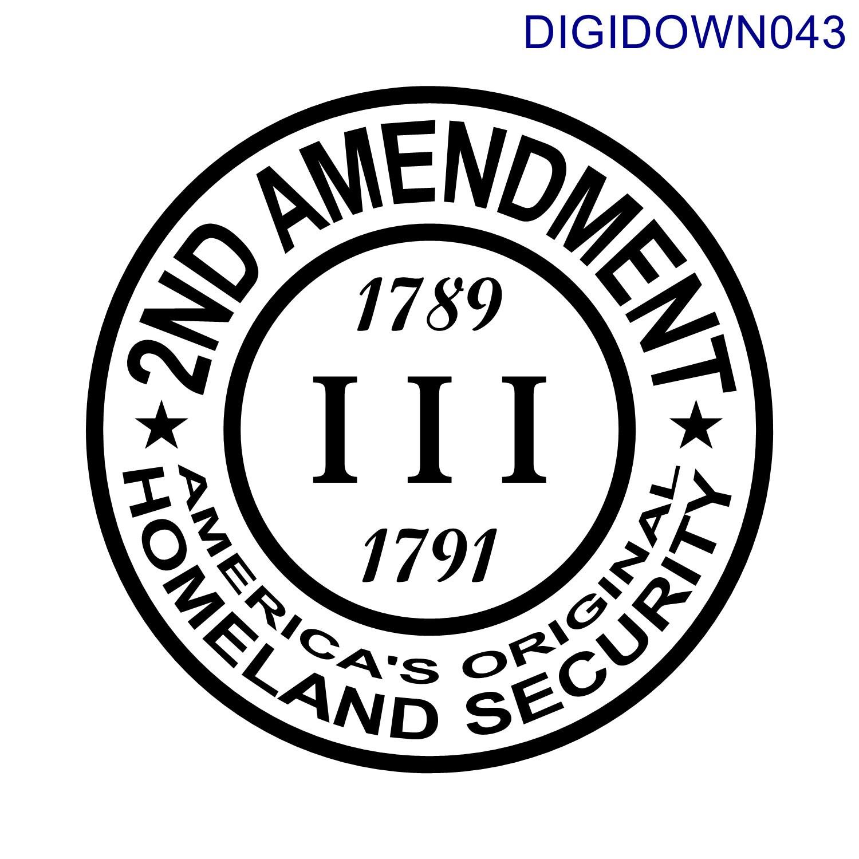 2nd Amendment America S Original Homeland Security
