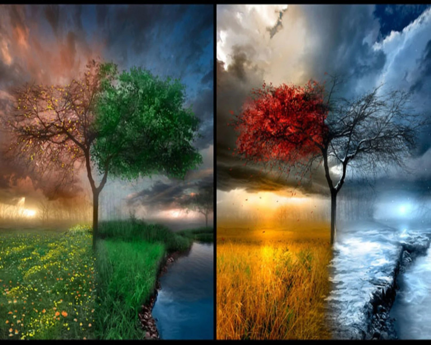 The Four Seasons Weather Art Poster Pring Weather Changes