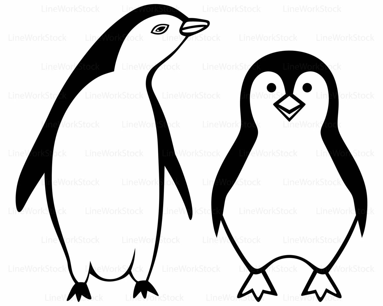 Penguin Svg Cartoon Penguin Clipart Penguin Svg Penguin